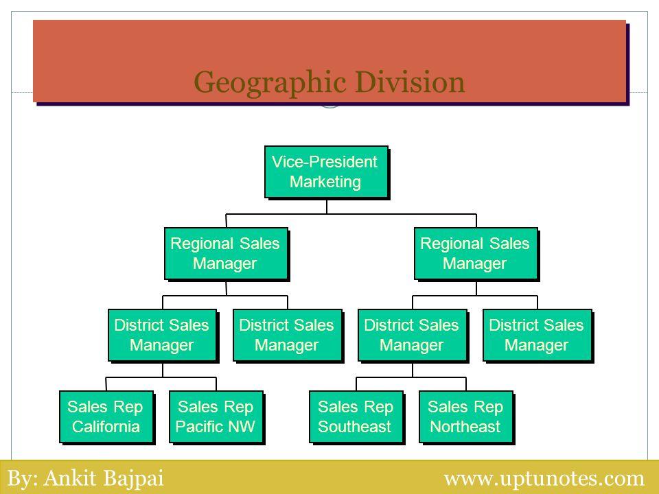 Geographic Division Sales Rep California Sales Rep Pacific NW Sales Rep Southeast Sales Rep Northeast District Sales Manager District Sales Manager Di