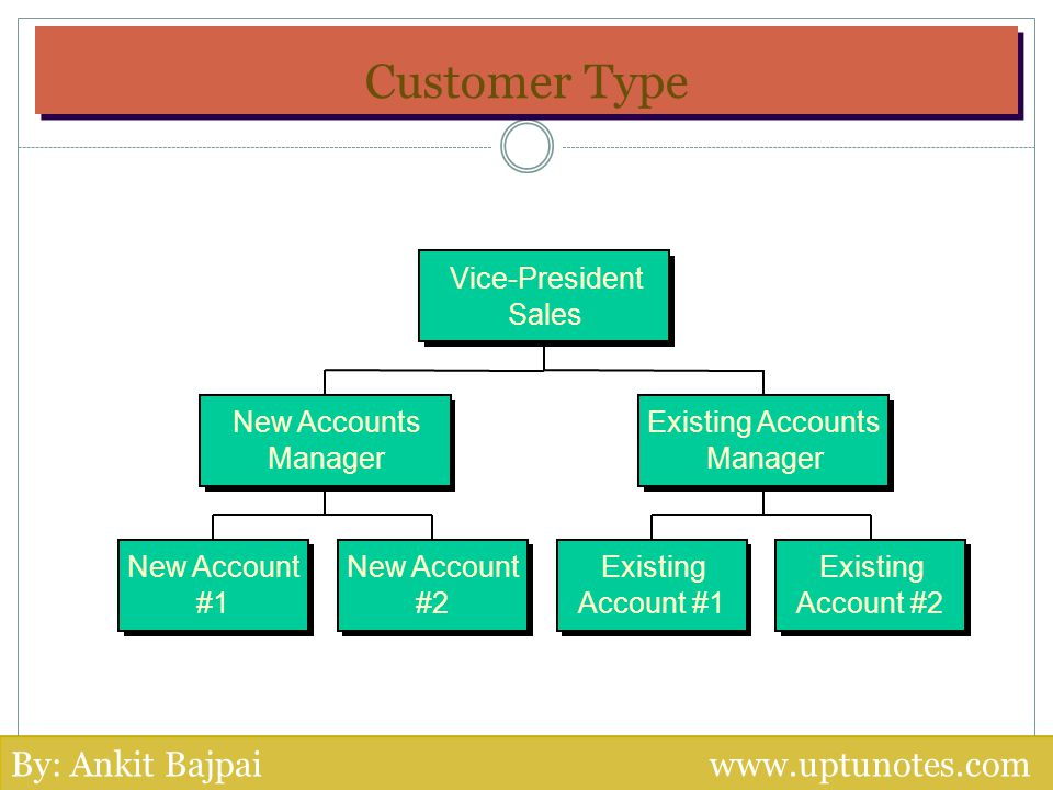Customer Type New Account #1 New Account #2 Existing Account #1 Existing Account #2 New Accounts Manager Existing Accounts Manager Vice-President Sale