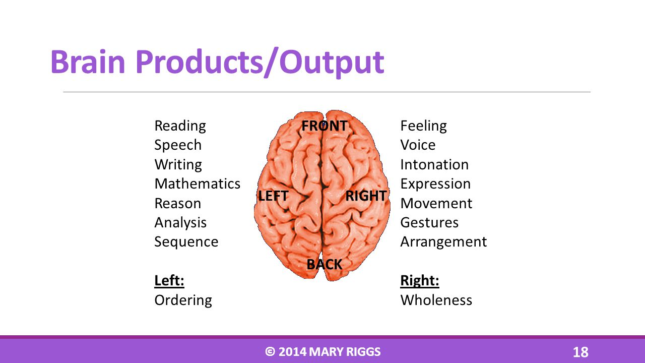Brain Products/Output Reading Speech Writing Mathematics Reason Analysis Sequence Left: Ordering Feeling Voice Intonation Expression Movement Gestures