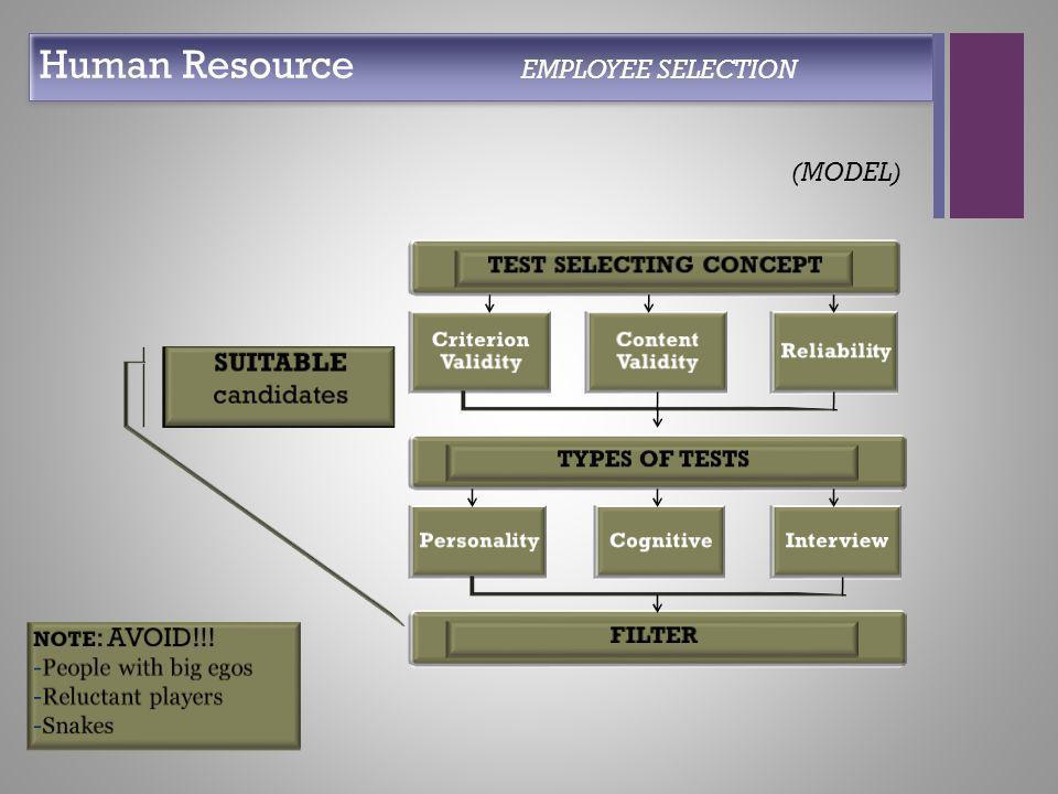 + Human Resource EMPLOYEE SELECTION (MODEL)
