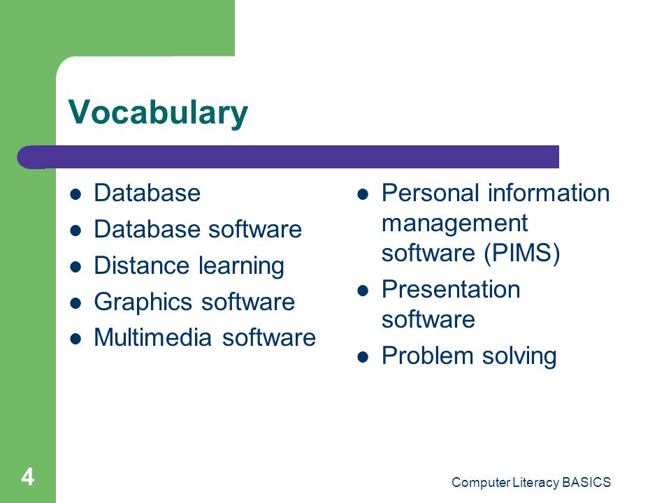 Computer Literacy BASICS 4 Vocabulary Database Database software Distance learning Graphics software Multimedia software Personal information manageme