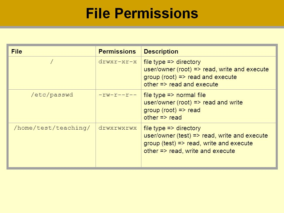 FilePermissionsDescription /drwxr-xr-x file type => directory user/owner (root) => read, write and execute group (root) => read and execute other => r