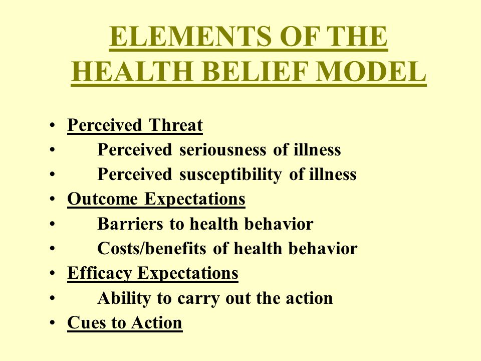 ELEMENTS OF THE HEALTH BELIEF MODEL Perceived Threat Perceived seriousness of illness Perceived susceptibility of illness Outcome Expectations Barriers to health behavior Costs/benefits of health behavior Efficacy Expectations Ability to carry out the action Cues to Action