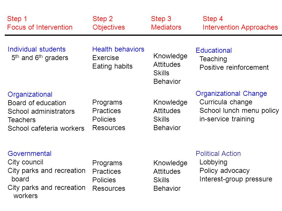 Step 1 Focus of Intervention Step 2 Objectives Step 3 Mediators Step 4 Intervention Approaches Individual students 5 th and 6 th graders Organizationa
