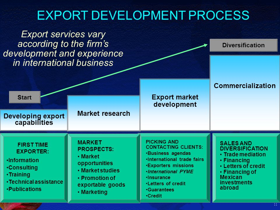 11 Developing export capabilities Market research Export market development Commercialization Start Diversification Information Consulting Training Te