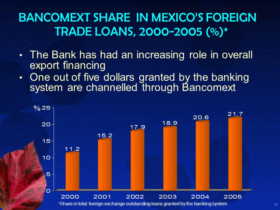 18 BANCOMEXT SHARE IN MEXICOS FOREIGN TRADE LOANS, 2000-2005 (%)* % * Share in total foreign exchange outstanding loans granted by the banking system The Bank has had an increasing role in overall export financing One out of five dollars granted by the banking system are channelled through Bancomext %