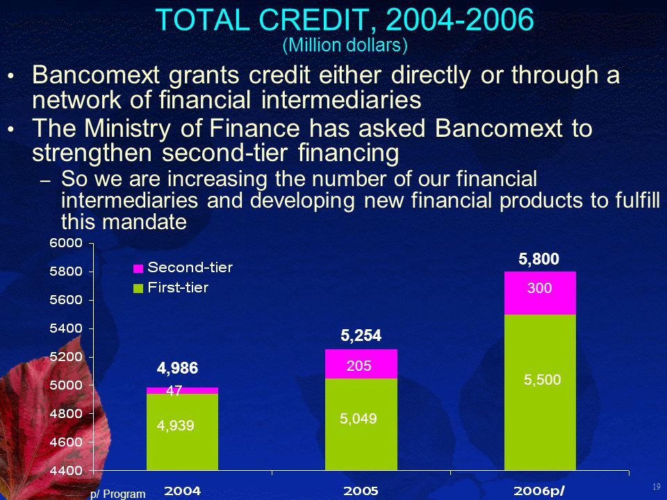 19 TOTAL CREDIT, 2004-2006 (Million dollars) 4,939 5,049 5,500 47 205 300 4,986 5,254 5,800 p/ Program Bancomext grants credit either directly or through a network of financial intermediaries The Ministry of Finance has asked Bancomext to strengthen second-tier financing – So we are increasing the number of our financial intermediaries and developing new financial products to fulfill this mandate