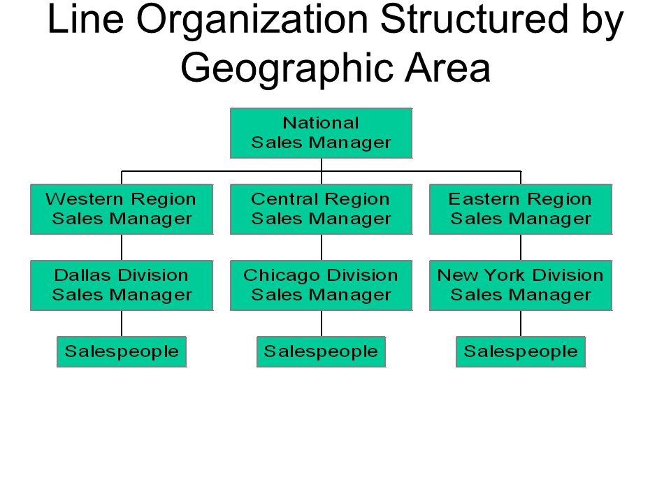 Line Organization Structured by Geographic Area