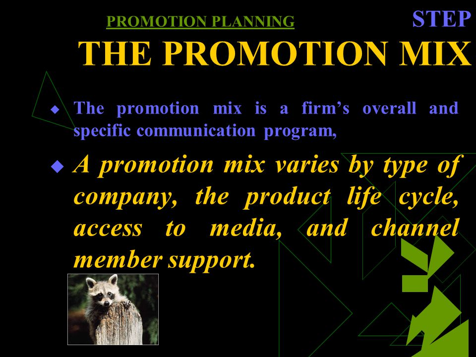 PROMOTION PLANNING STEP THE PROMOTION MIX The promotion mix is a firms overall and specific communication program, A promotion mix varies by type of company, the product life cycle, access to media, and channel member support.