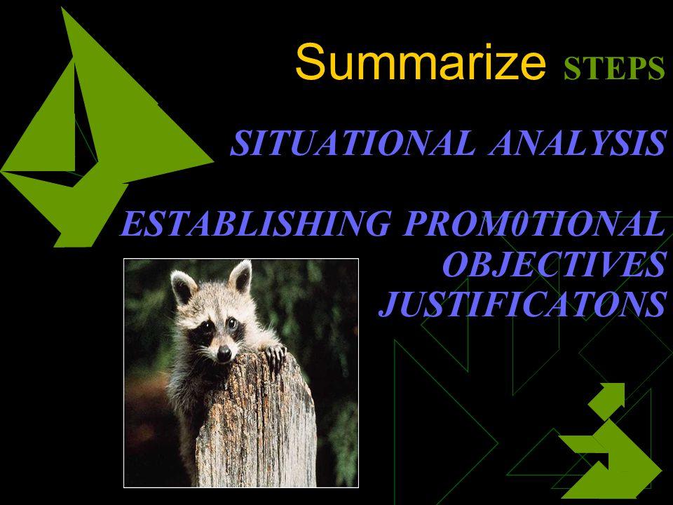 Summarize STEPS SITUATIONAL ANALYSIS ESTABLISHING PROM0TIONAL OBJECTIVES JUSTIFICATONS