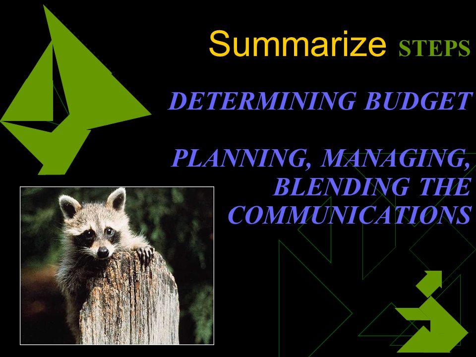 Summarize STEPS DETERMINING BUDGET PLANNING, MANAGING, BLENDING THE COMMUNICATIONS