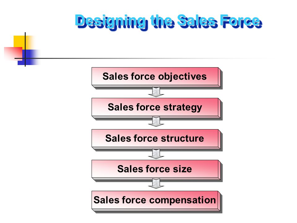 Sales force objectives Sales force strategy Sales force structure Sales force size Sales force compensation Designing the Sales Force