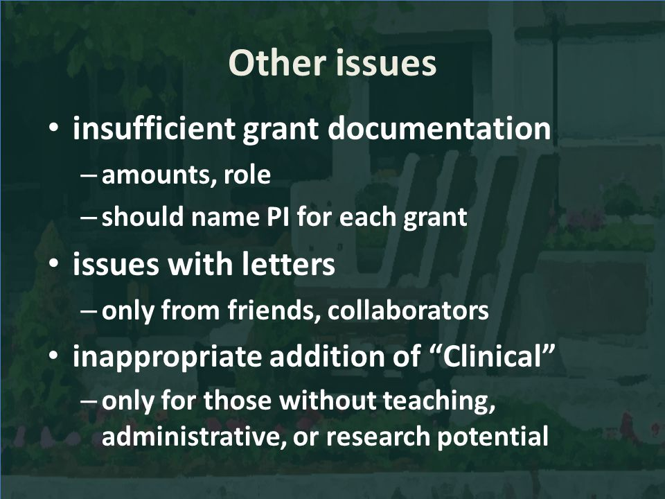 Other issues insufficient grant documentation – amounts, role – should name PI for each grant issues with letters – only from friends, collaborators i