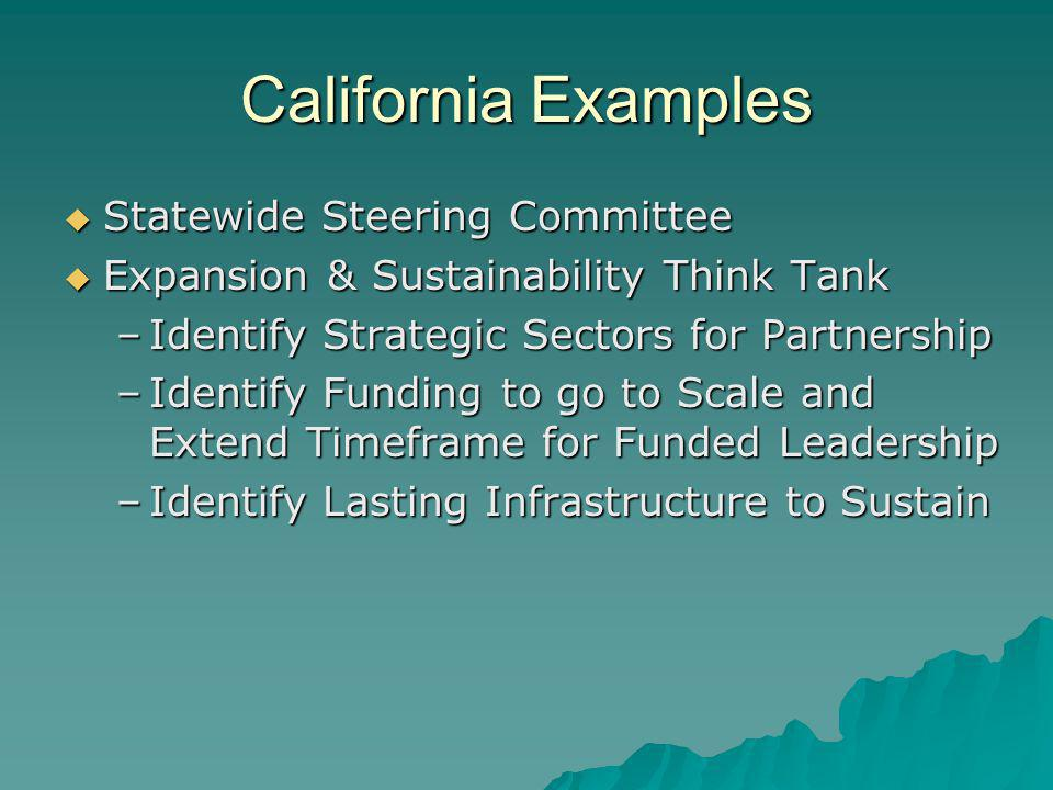 California Examples Statewide Steering Committee Statewide Steering Committee Expansion & Sustainability Think Tank Expansion & Sustainability Think T