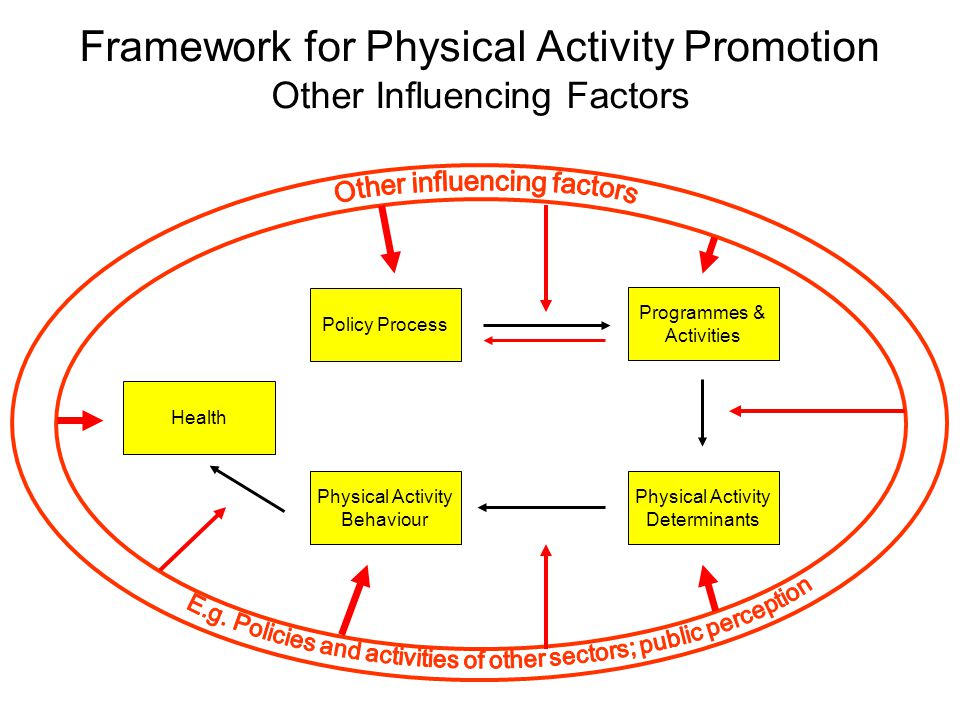Physical Activity Behaviour Health Physical Activity Determinants Programmes & Activities Policy Process Framework for Physical Activity Promotion Other Influencing Factors