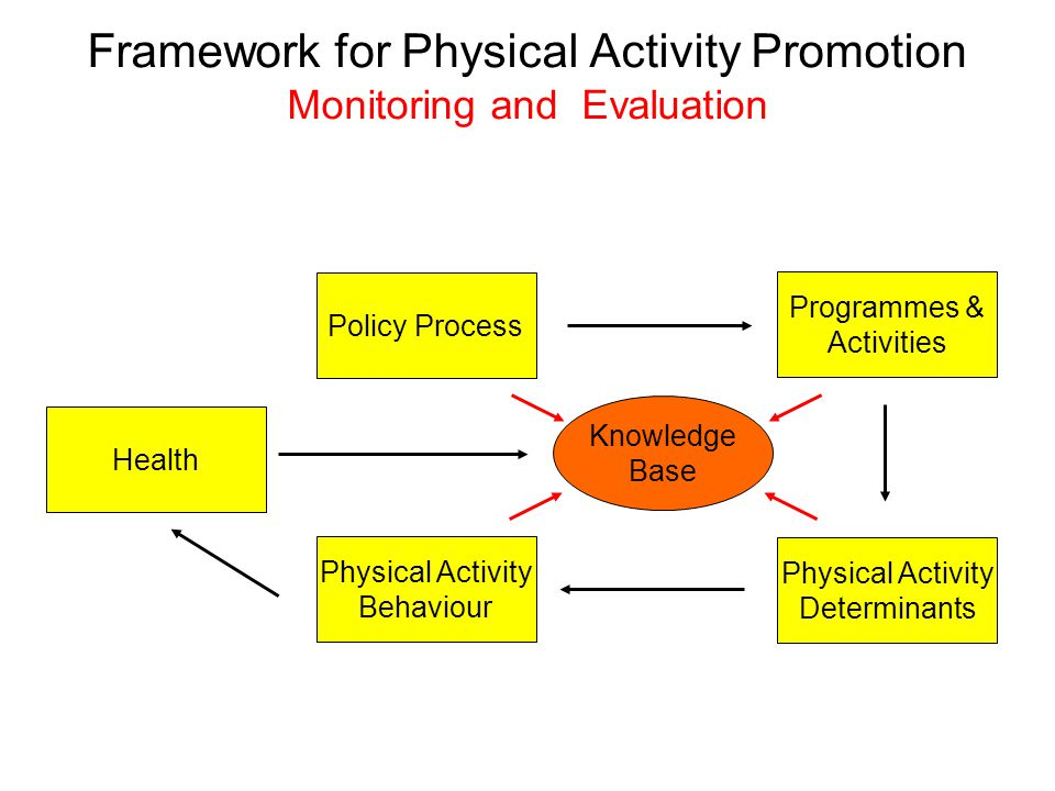 Framework for Physical Activity Promotion Monitoring and Evaluation Policy Process Physical Activity Behaviour Physical Activity Determinants Programmes & Activities Health Knowledge Base