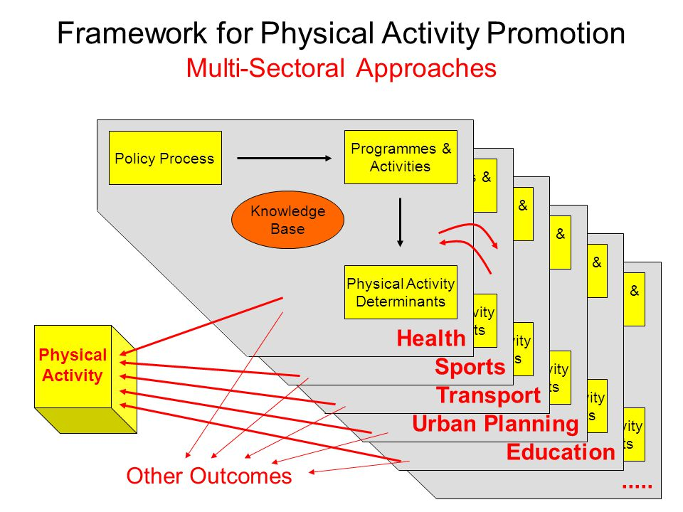 Policy Process Physical Activity Determinants Programmes & Activities Knowledge Base.....