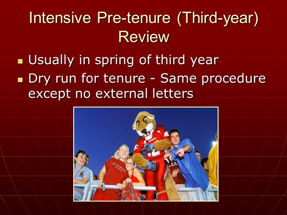 Intensive Pre-tenure (Third-year) Review Usually in spring of third year Usually in spring of third year Dry run for tenure - Same procedure except no external letters Dry run for tenure - Same procedure except no external letters