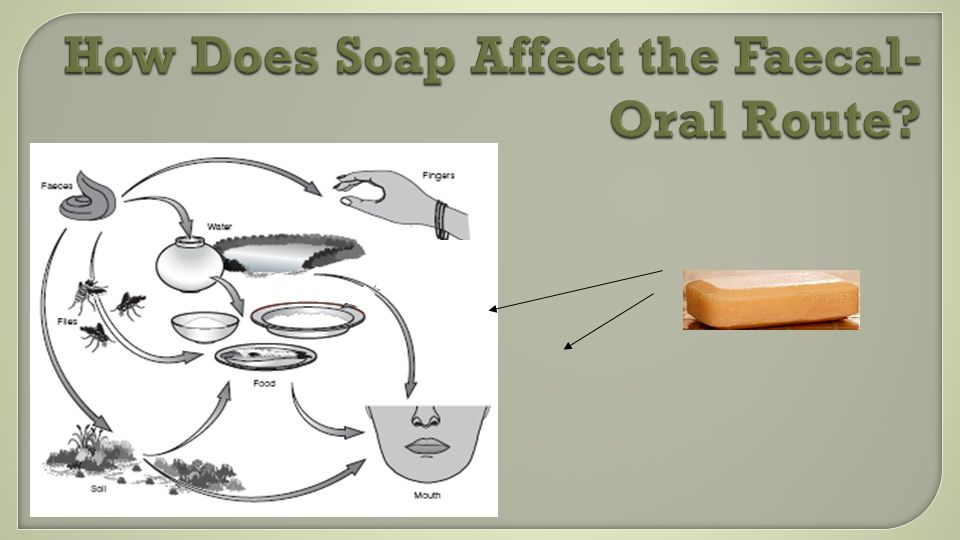 How Does Soap Affect the Faecal- Oral Route?