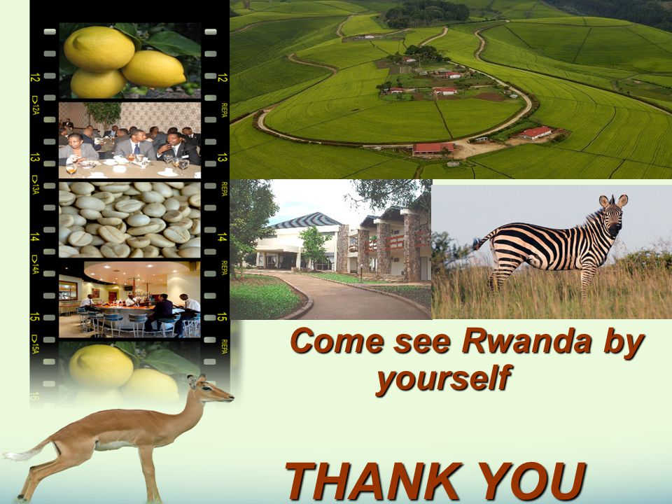Come see Rwanda by yourself Come see Rwanda by yourself THANK YOU