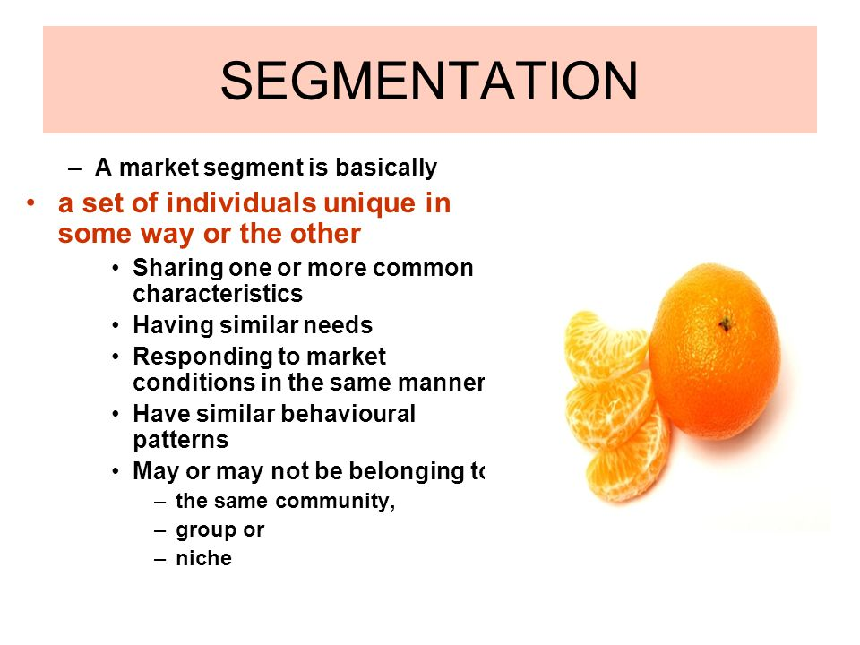 SEGMENTATION –A market segment is basically a set of individuals unique in some way or the other Sharing one or more common characteristics Having sim