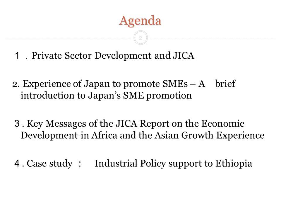 Agenda Private Sector Development and JICA 2.