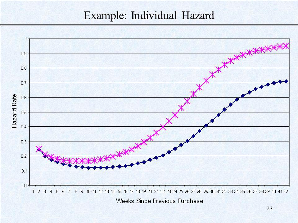 23 Example: Individual Hazard