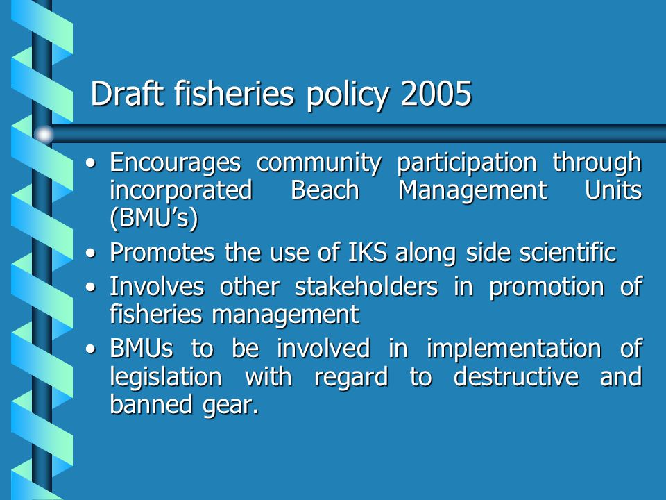 Draft fisheries policy 2005 Encourages community participation through incorporated Beach Management Units (BMUs)Encourages community participation th