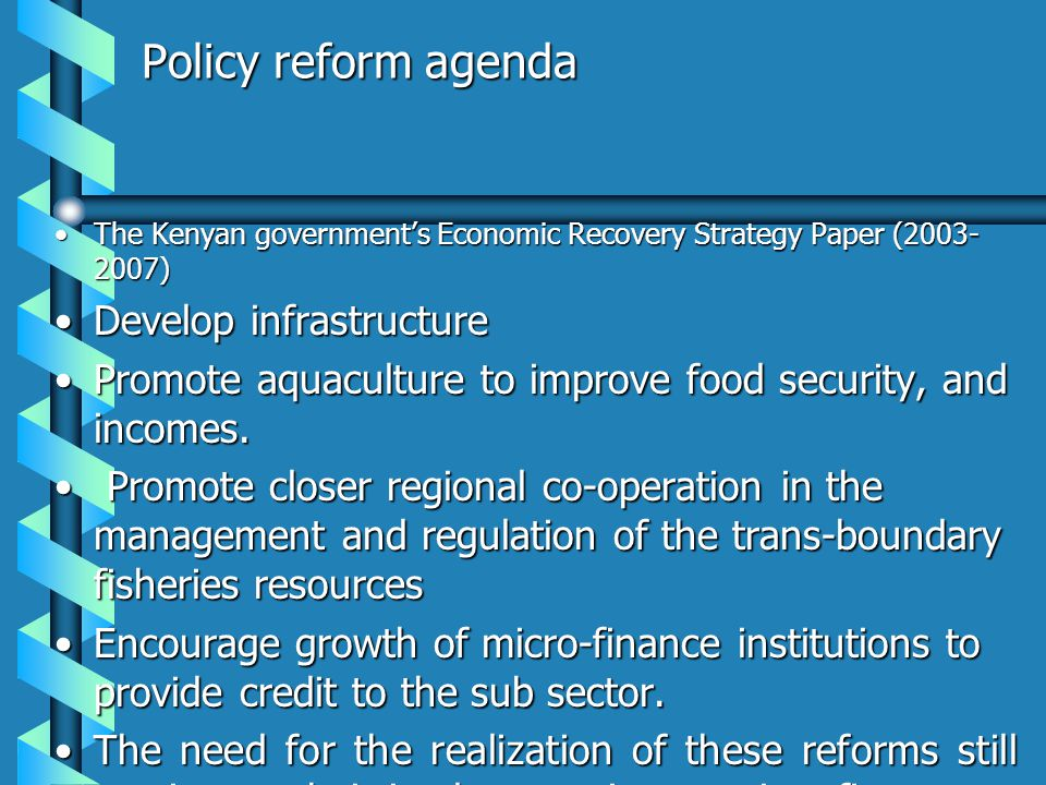 Policy reform agenda The Kenyan governments Economic Recovery Strategy Paper (2003- 2007)The Kenyan governments Economic Recovery Strategy Paper (2003