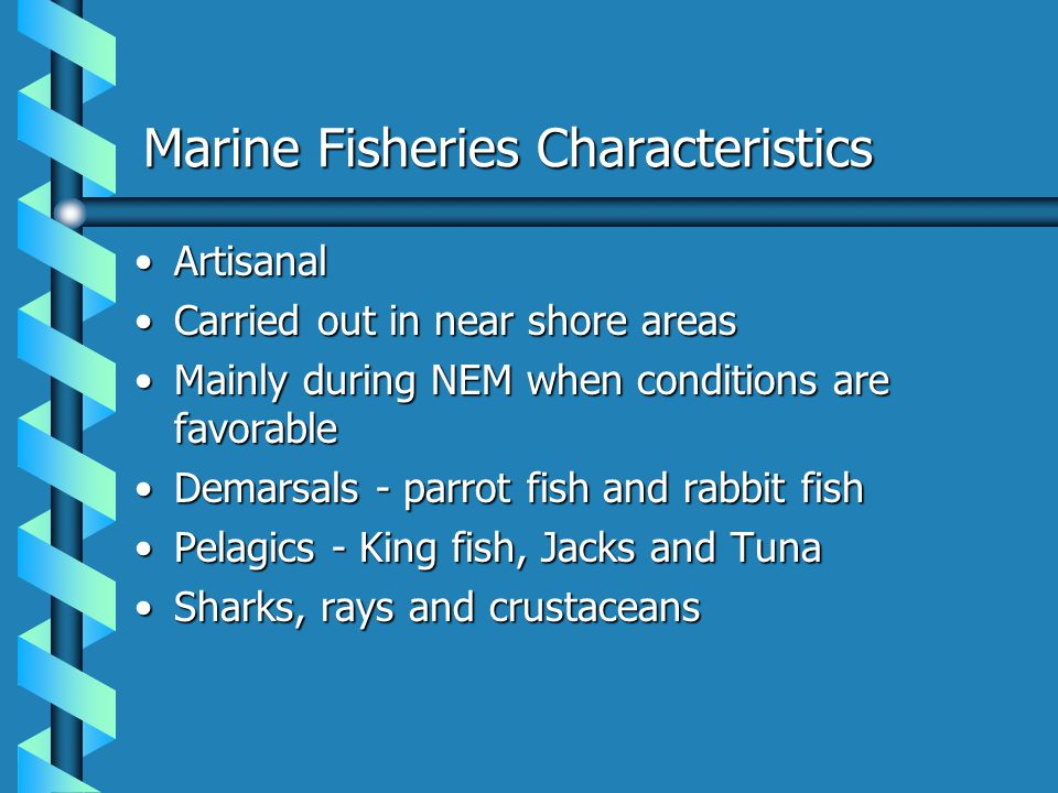 Marine Fisheries Characteristics ArtisanalArtisanal Carried out in near shore areasCarried out in near shore areas Mainly during NEM when conditions a
