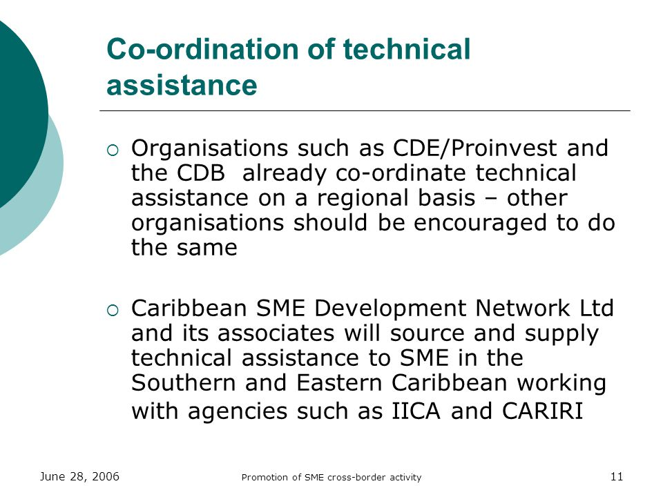 June 28, 2006 Promotion of SME cross-border activity 11 Co-ordination of technical assistance Organisations such as CDE/Proinvest and the CDB already co-ordinate technical assistance on a regional basis – other organisations should be encouraged to do the same Caribbean SME Development Network Ltd and its associates will source and supply technical assistance to SME in the Southern and Eastern Caribbean working with agencies such as IICA and CARIRI