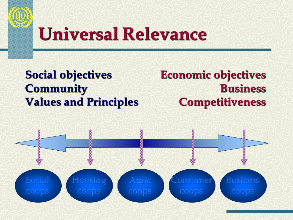 Universal Relevance It is recognized that cooperatives operate in all sectors of the economy. This Recommendation applies to all types and forms of co