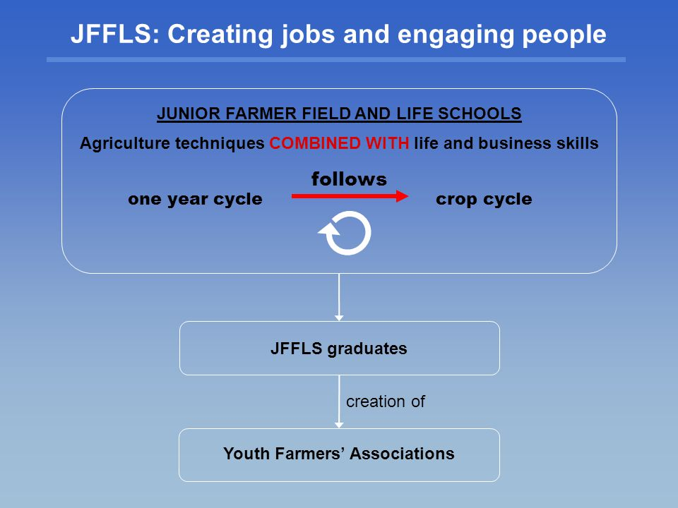 JUNIOR FARMER FIELD AND LIFE SCHOOLS Agriculture techniques COMBINED WITH life and business skills JFFLS: Creating jobs and engaging people crop cycle follows creation of Youth Farmers Associations JFFLS graduates one year cycle
