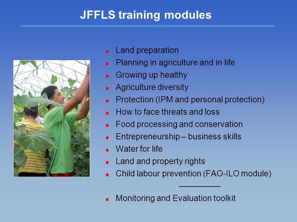 JFFLS training modules Land preparation Planning in agriculture and in life Growing up healthy Agriculture diversity Protection (IPM and personal protection) How to face threats and loss Food processing and conservation Entrepreneurship – business skills Water for life Land and property rights Child labour prevention (FAO-ILO module) Monitoring and Evaluation toolkit