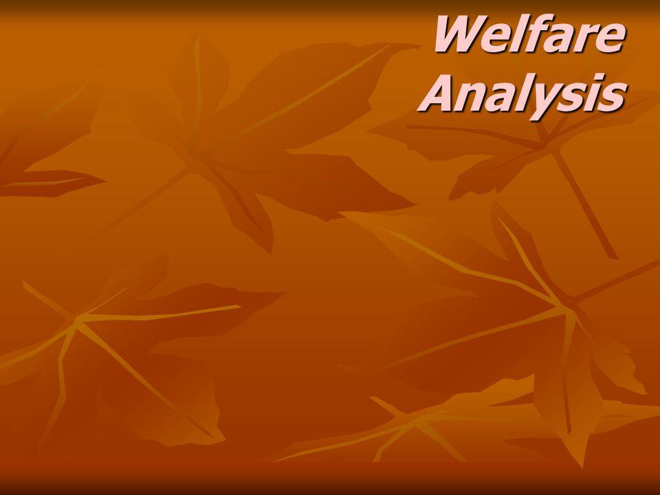Welfare Analysis