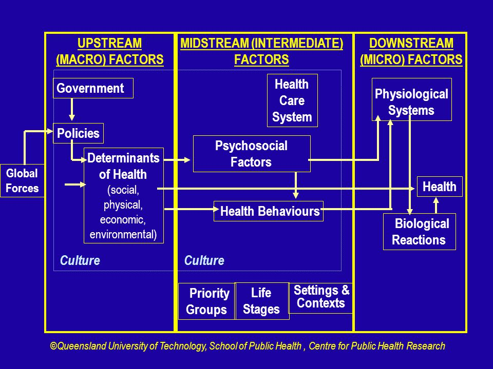 UPSTREAM (MACRO) FACTORS MIDSTREAM (INTERMEDIATE) FACTORS DOWNSTREAM (MICRO) FACTORS Global Forces Policies Determinants of Health (social, physical, economic, environmental) Health Care System Health Behaviours Physiological Systems Health Biological Reactions Priority Groups Life Stages Settings & Contexts Government Culture Psychosocial Factors ©Queensland University of Technology, School of Public Health, Centre for Public Health Research