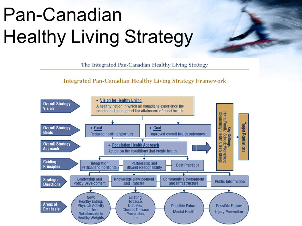 Pan-Canadian Healthy Living Strategy
