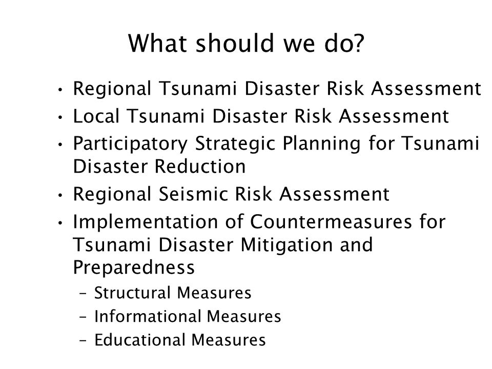What should we do? Regional Tsunami Disaster Risk Assessment Local Tsunami Disaster Risk Assessment Participatory Strategic Planning for Tsunami Disas