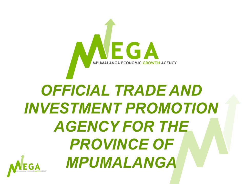 MEGA Structure:- Trade and Investment Division Property Division Enterprise Development Corporate Services