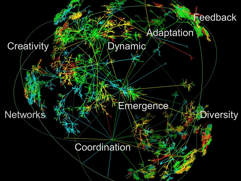 Emergence Feedback Dynamic Networks Adaptation Diversity Coordination Creativity