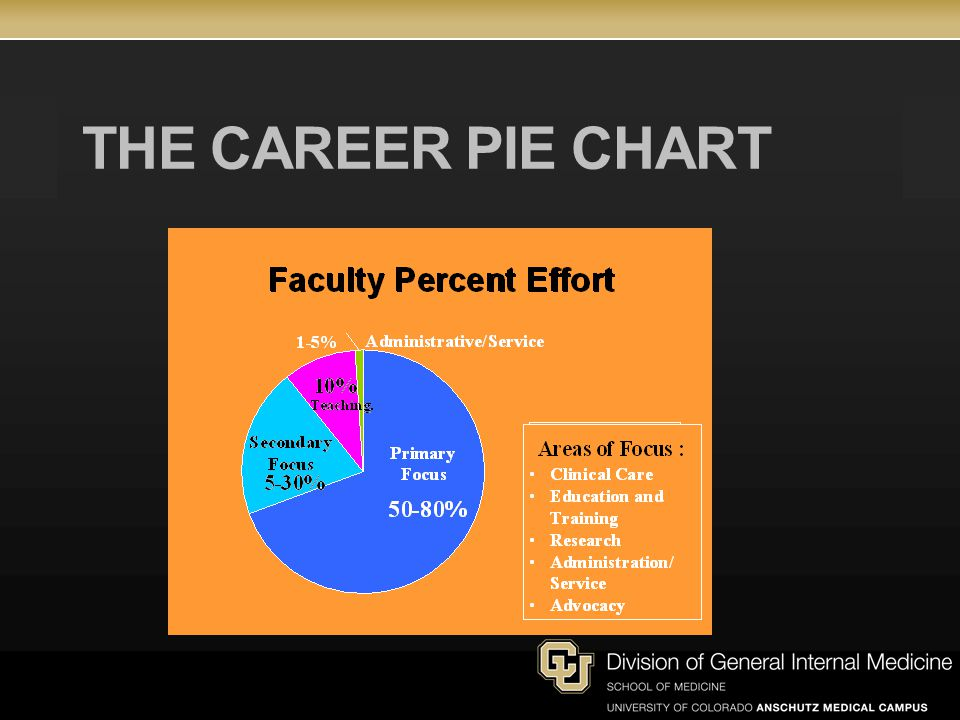 THE CAREER PIE CHART