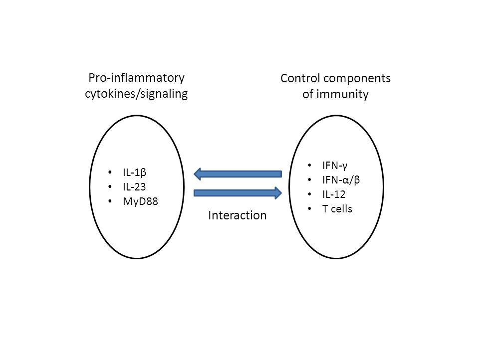 Pro-inflammatory cytokines/signaling IL-1β IL-23 MyD88 IFN-γ IFN-α/β IL-12 T cells Control components of immunity Interaction