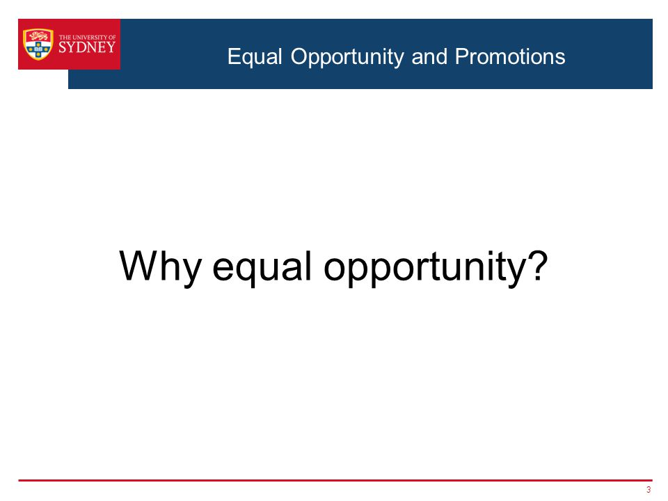 3 Why equal opportunity?