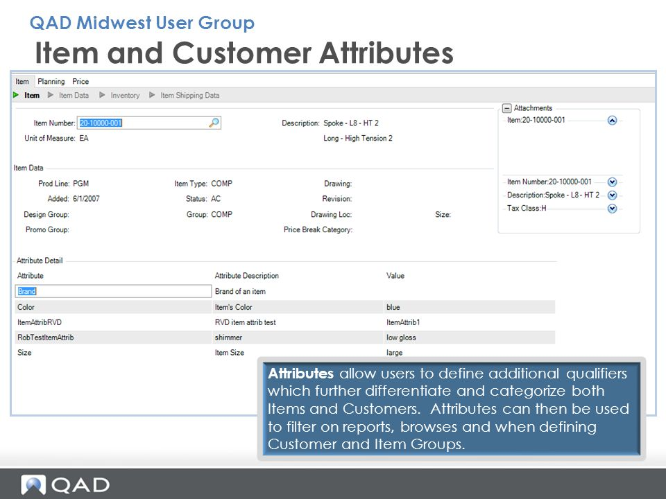 Item and Customer Attributes Attributes allow users to define additional qualifiers which further differentiate and categorize both Items and Customer