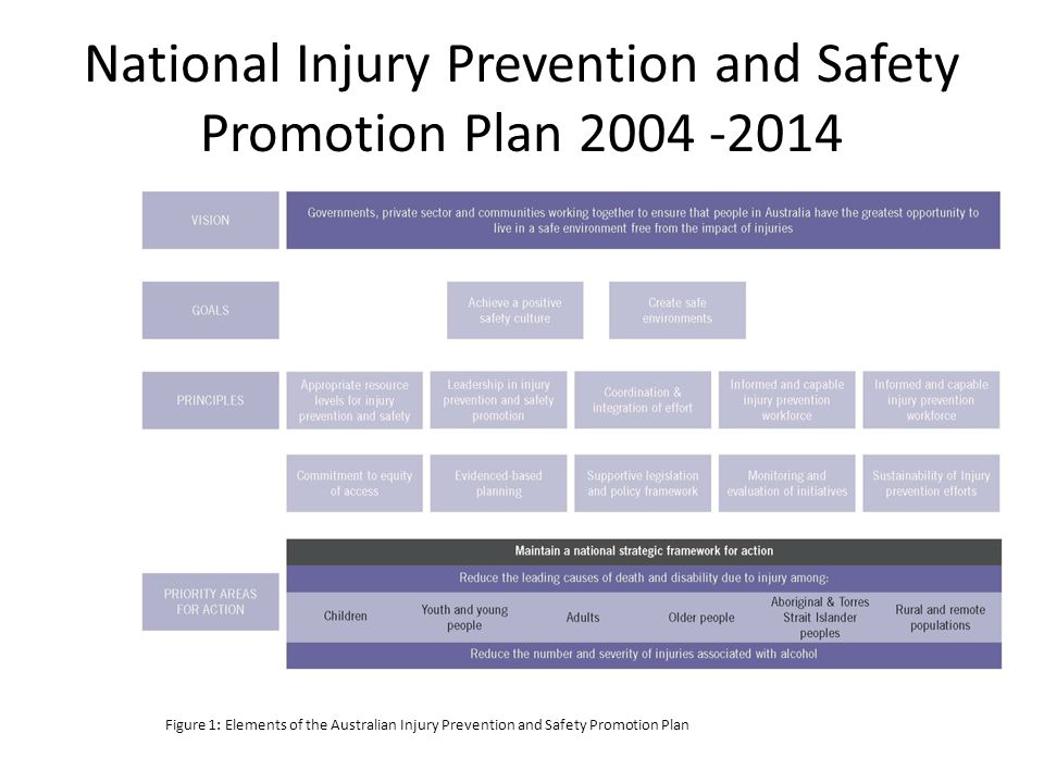 National Injury Prevention and Safety Promotion Plan 2004 -2014 Figure 1: Elements of the Australian Injury Prevention and Safety Promotion Plan