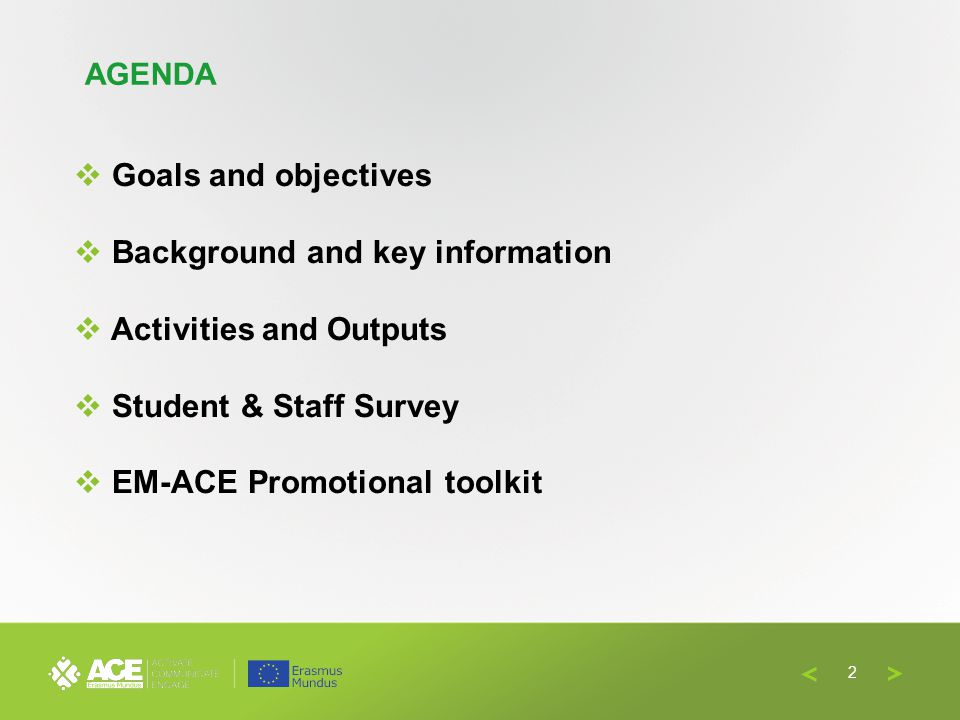 Goals and objectives Background and key information Activities and Outputs Student & Staff Survey EM-ACE Promotional toolkit AGENDA 2