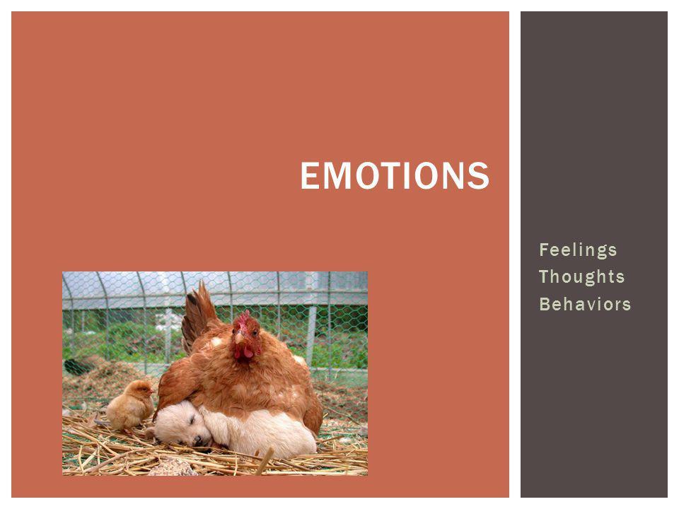 Feelings Thoughts Behaviors EMOTIONS
