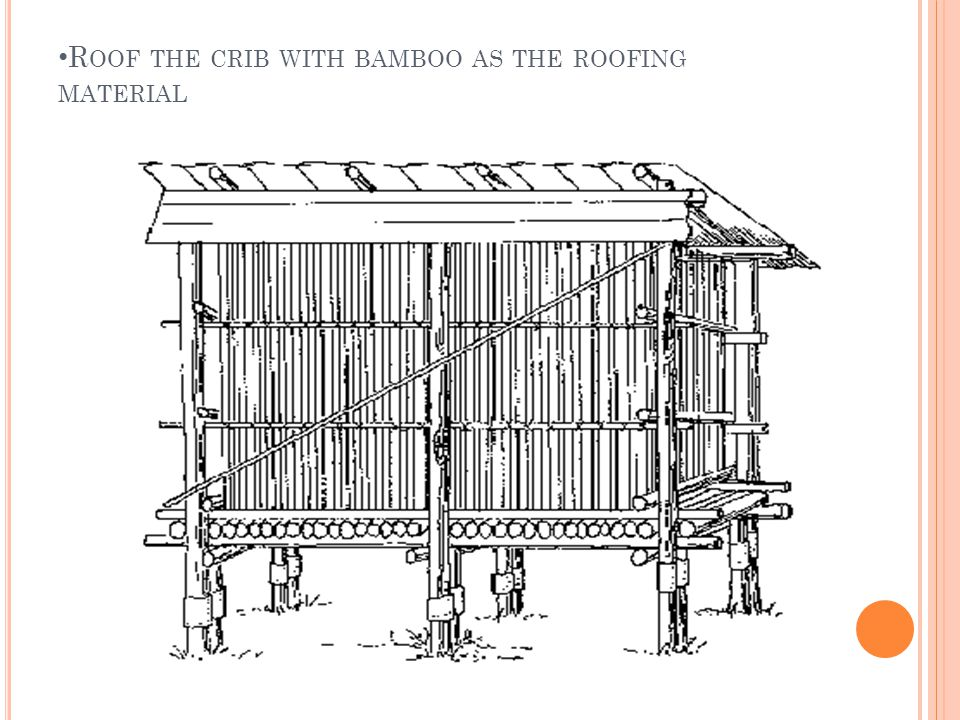 R OOF THE CRIB WITH BAMBOO AS THE ROOFING MATERIAL