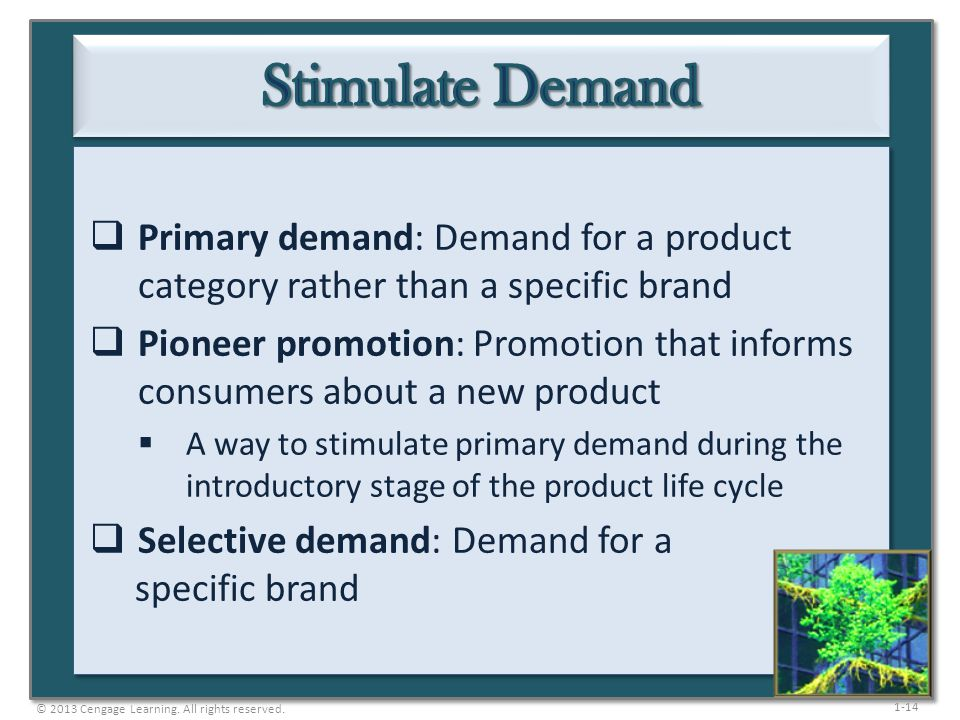 1-14 Primary demand: Demand for a product category rather than a specific brand Pioneer promotion: Promotion that informs consumers about a new produc