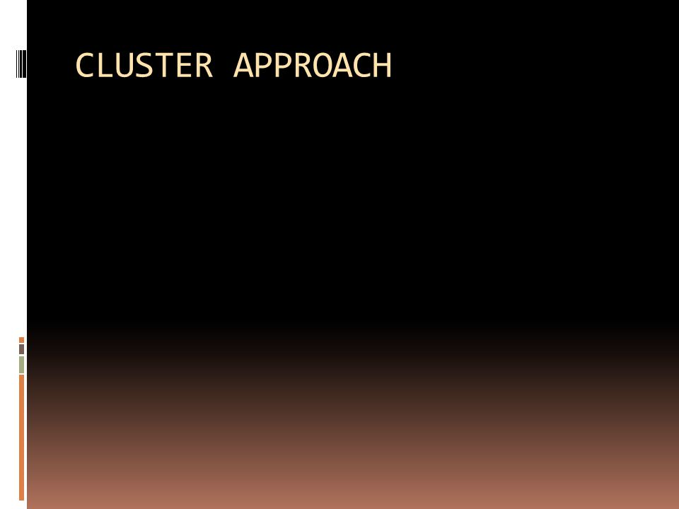 CLUSTER APPROACH